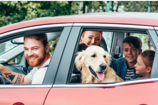 Veja 4 dicas para deixar mais confortável a viagem com crianças